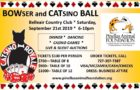 PAF Bowser nad Catsino Ball